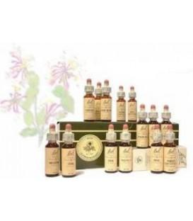 Dr. Bach Kit Completo Flores de Bach 38 Elixires + 2 Rescue Remedy