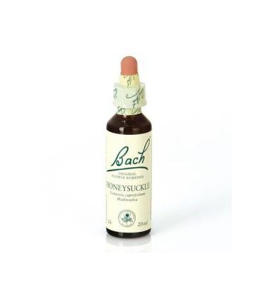 Dr. Bach Honeysuckle - Flor de Bach (20 ml.)