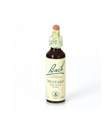 Dr. Bach Mustard - Flor de Bach (20 ml.)