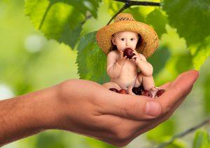 bebé-papillas-fruta-nutritivas-farmacia-paco-clara